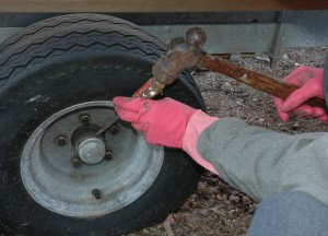 Removing grease cap. Rubber gloves help keep hands clean.
